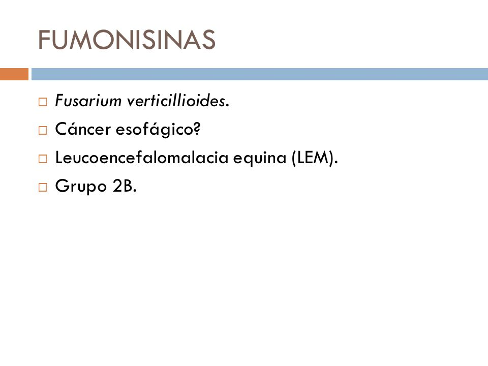 FUMONISINAS Fusarium verticillioides. Cáncer esofágico? Leucoencefalomalacia equina (LEM). Grupo 2B.