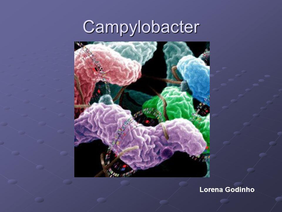 Algunas especies del género Campylobacter son reconocidas como agentes causales de diarrea en el hombre.