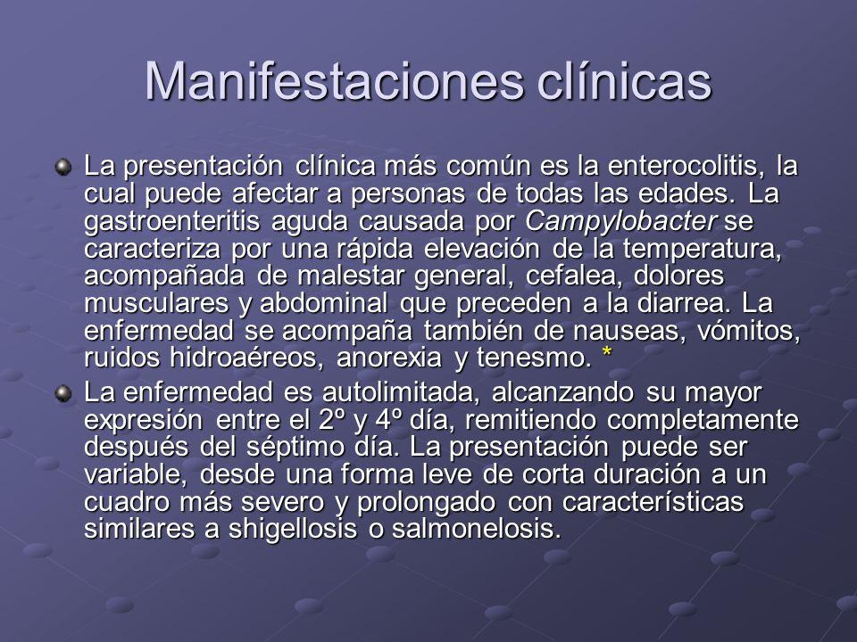 Manifestaciones clínicas La presentación clínica más común es la enterocolitis, la cual puede afectar a personas de todas las edades. La gastroenterit