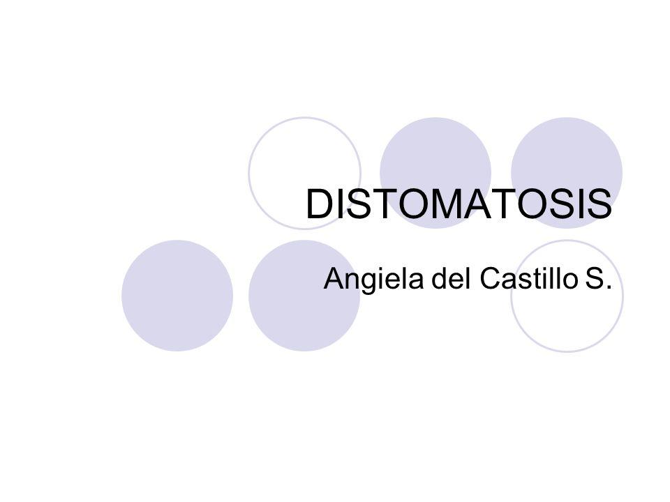 INTRODUCCION La Distomatosis (o Fasciolasis) es una enfermedad interna causada por parásitos del género Fasciola, que puede afectar a cualquier mamífero y ocasionalmente al Hombre (zoonosis).