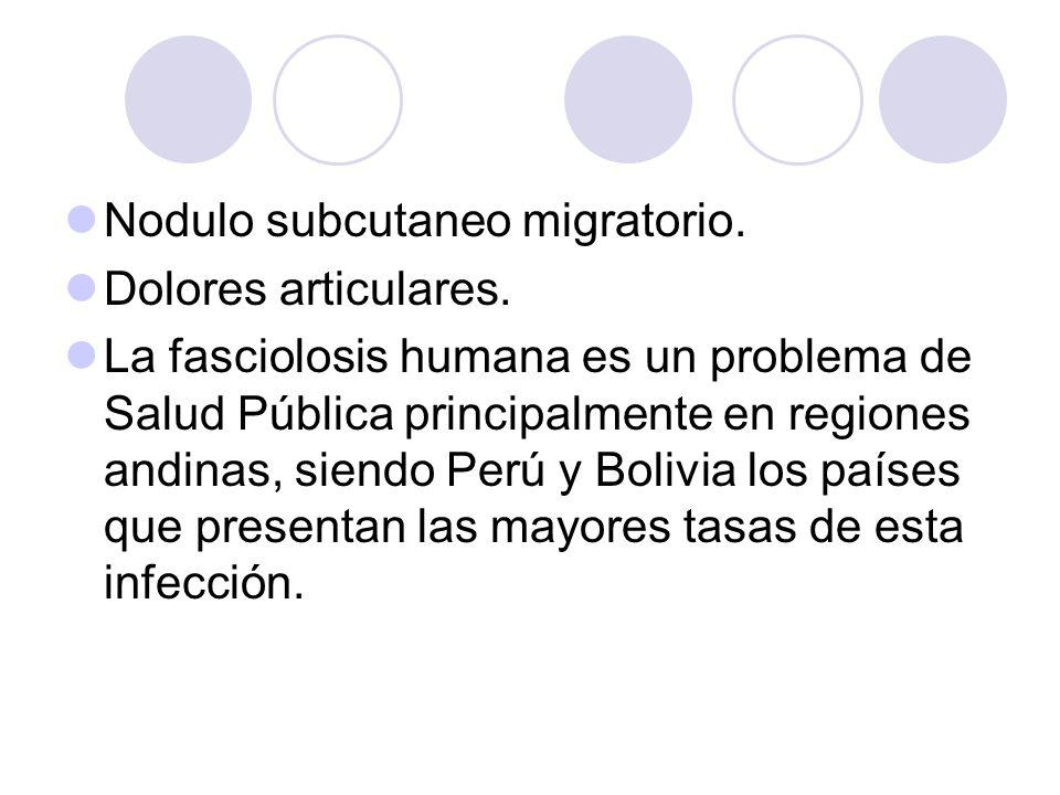 Nodulo subcutaneo migratorio. Dolores articulares. La fasciolosis humana es un problema de Salud Pública principalmente en regiones andinas, siendo Pe