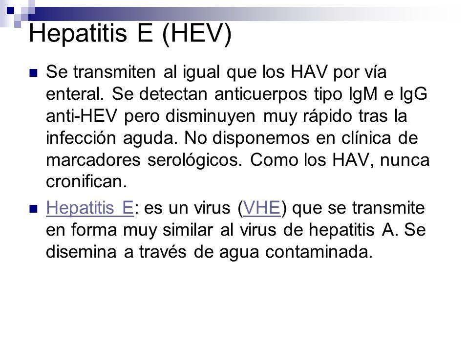 Hepatitis E (HEV) Se transmiten al igual que los HAV por vía enteral. Se detectan anticuerpos tipo IgM e IgG anti-HEV pero disminuyen muy rápido tras