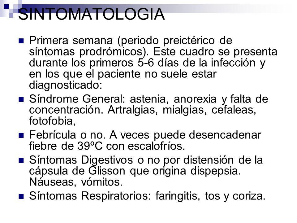 SINTOMATOLOGIA Primera semana (periodo preictérico de síntomas prodrómicos). Este cuadro se presenta durante los primeros 5-6 días de la infección y e