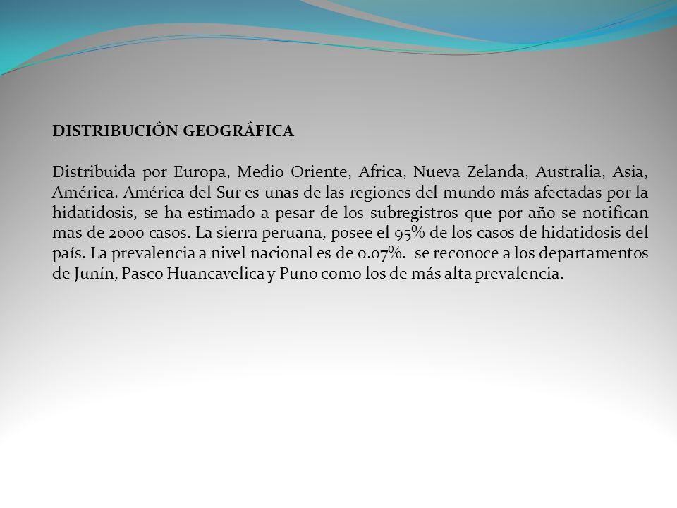 DISTRIBUCIÓN GEOGRÁFICA Distribuida por Europa, Medio Oriente, Africa, Nueva Zelanda, Australia, Asia, América. América del Sur es unas de las regione
