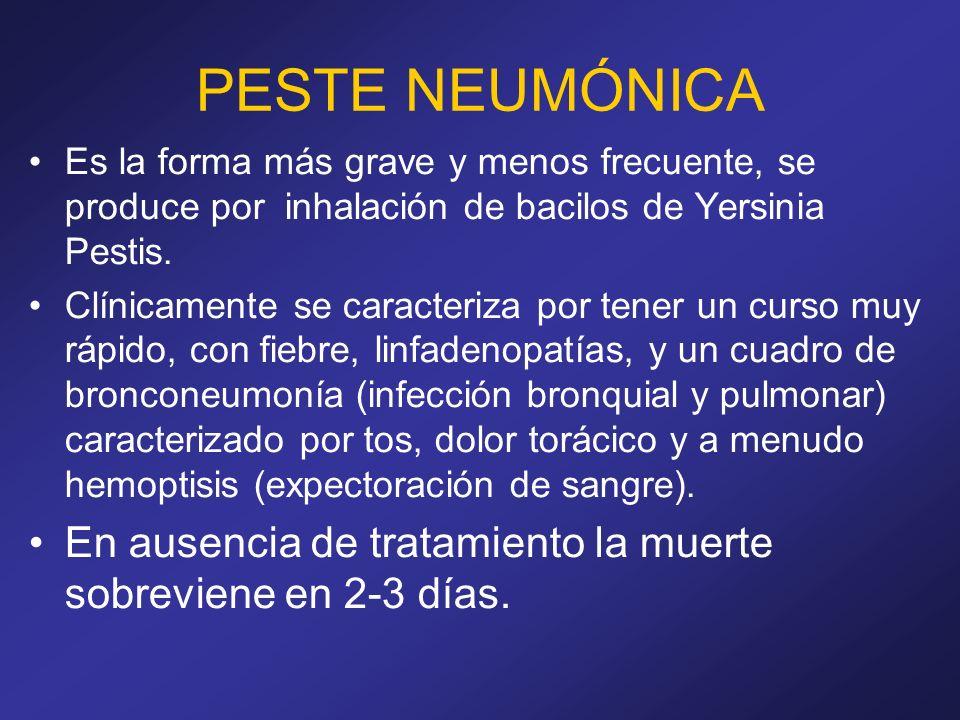 PESTE NEUMÓNICA Es la forma más grave y menos frecuente, se produce por inhalación de bacilos de Yersinia Pestis. Clínicamente se caracteriza por tene