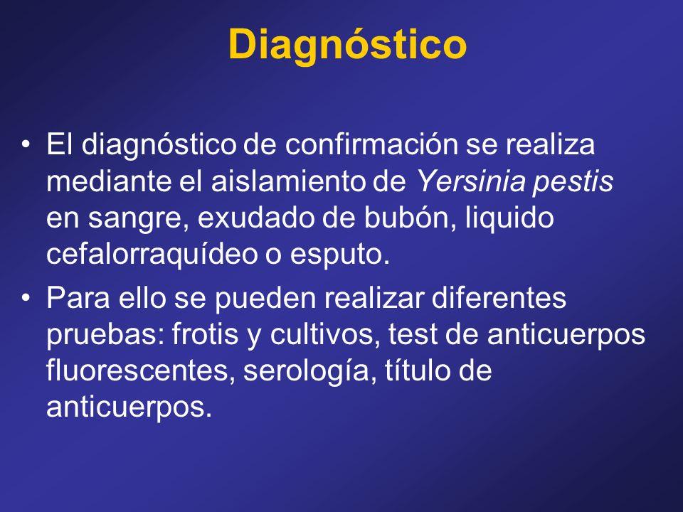 Diagnóstico El diagnóstico de confirmación se realiza mediante el aislamiento de Yersinia pestis en sangre, exudado de bubón, liquido cefalorraquídeo