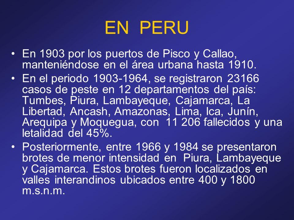 EN PERU En 1903 por los puertos de Pisco y Callao, manteniéndose en el área urbana hasta 1910. En el periodo 1903-1964, se registraron 23166 casos de
