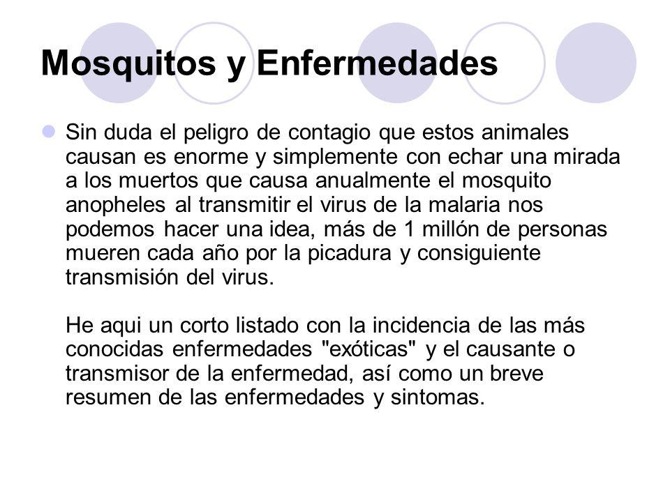 Mosquitos y Enfermedades Sin duda el peligro de contagio que estos animales causan es enorme y simplemente con echar una mirada a los muertos que caus