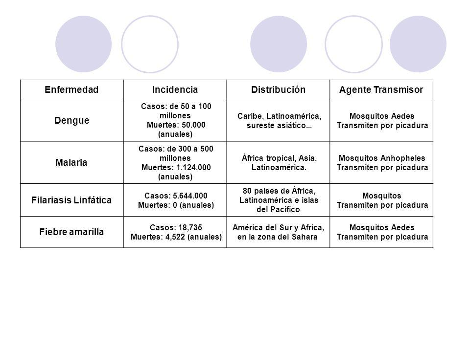 EnfermedadIncidenciaDistribuciónAgente Transmisor Dengue Casos: de 50 a 100 millones Muertes: 50.000 (anuales) Caribe, Latinoamérica, sureste asiático