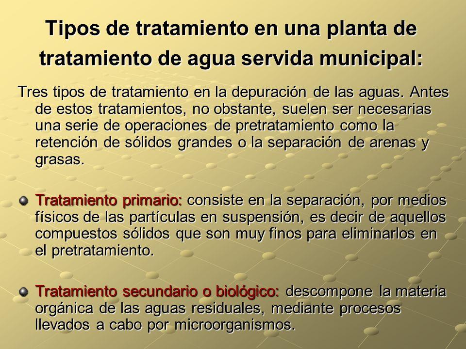 Tipos de tratamiento en una planta de tratamiento de agua servida municipal: Tres tipos de tratamiento en la depuración de las aguas. Antes de estos t