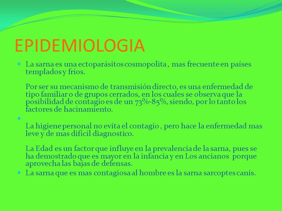 EPIDEMIOLOGIA La sarna es una ectoparásitos cosmopolita, mas frecuente en países templados y fríos. Por ser su mecanismo de transmisión directo, es un