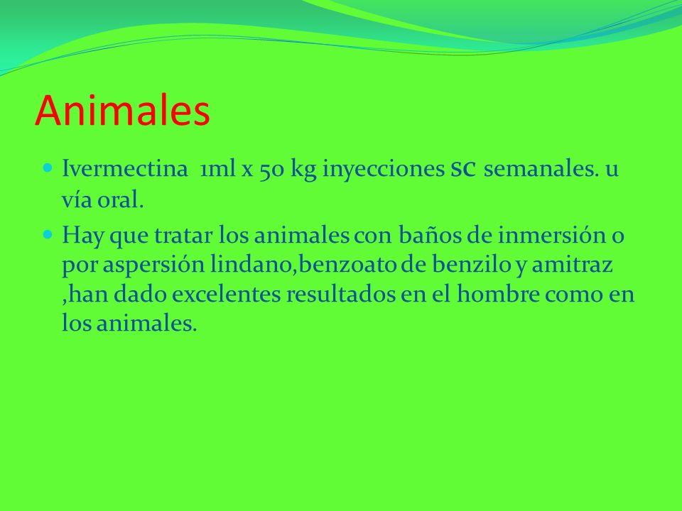 Animales Ivermectina 1ml x 50 kg inyecciones sc semanales. u vía oral. Hay que tratar los animales con baños de inmersión o por aspersión lindano,benz