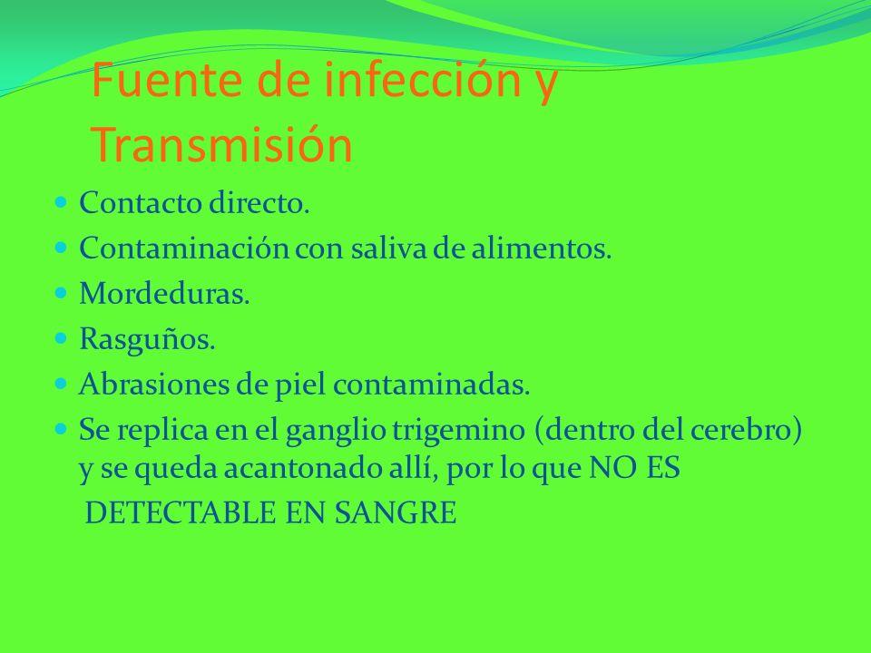 Fuente de infección y Transmisión Contacto directo. Contaminación con saliva de alimentos. Mordeduras. Rasguños. Abrasiones de piel contaminadas. Se r