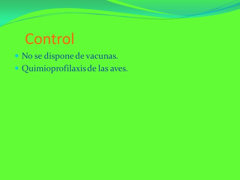 Control No se dispone de vacunas. Quimioprofilaxis de las aves.