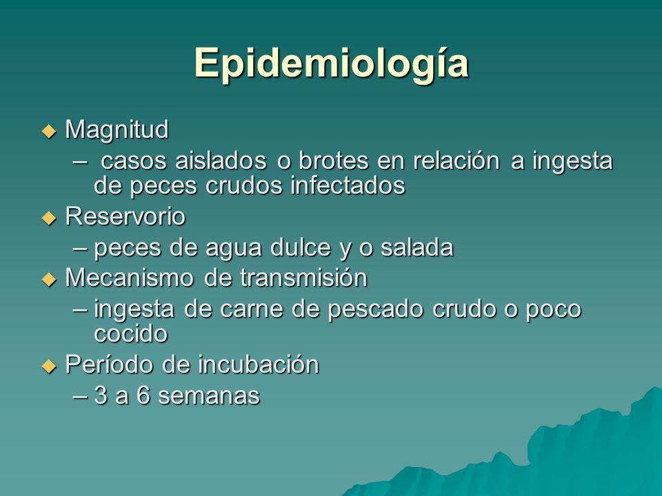 Epidemiología Magnitud Magnitud – casos aislados o brotes en relación a ingesta de peces crudos infectados Reservorio Reservorio –peces de agua dulce