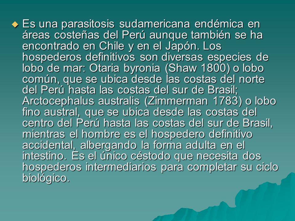 Es una parasitosis sudamericana endémica en áreas costeñas del Perú aunque también se ha encontrado en Chile y en el Japón. Los hospederos definitivos