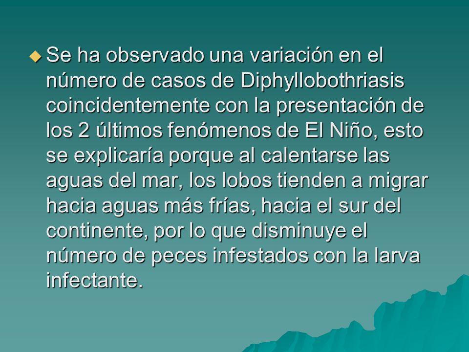 Se ha observado una variación en el número de casos de Diphyllobothriasis coincidentemente con la presentación de los 2 últimos fenómenos de El Niño,