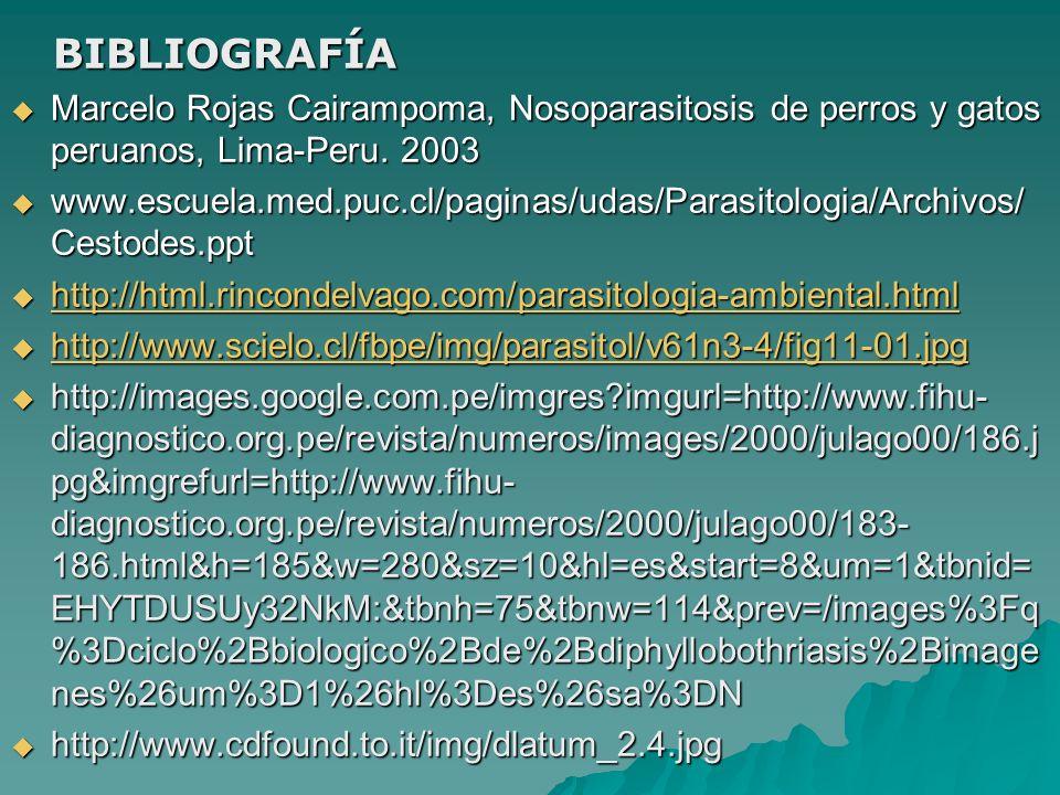 BIBLIOGRAFÍA BIBLIOGRAFÍA Marcelo Rojas Cairampoma, Nosoparasitosis de perros y gatos peruanos, Lima-Peru. 2003 Marcelo Rojas Cairampoma, Nosoparasito
