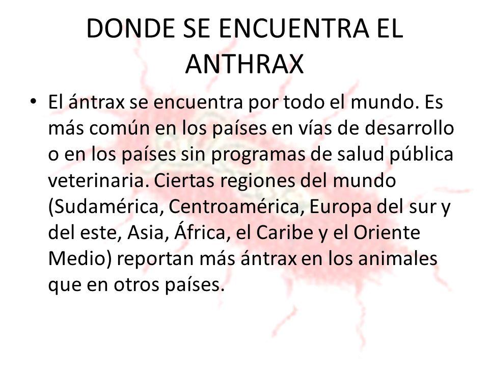 DONDE SE ENCUENTRA EL ANTHRAX El ántrax se encuentra por todo el mundo. Es más común en los países en vías de desarrollo o en los países sin programas
