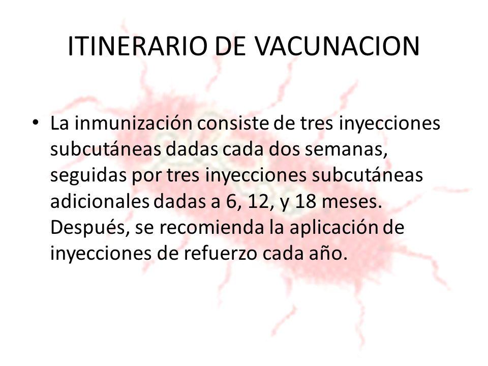 ITINERARIO DE VACUNACION La inmunización consiste de tres inyecciones subcutáneas dadas cada dos semanas, seguidas por tres inyecciones subcutáneas ad