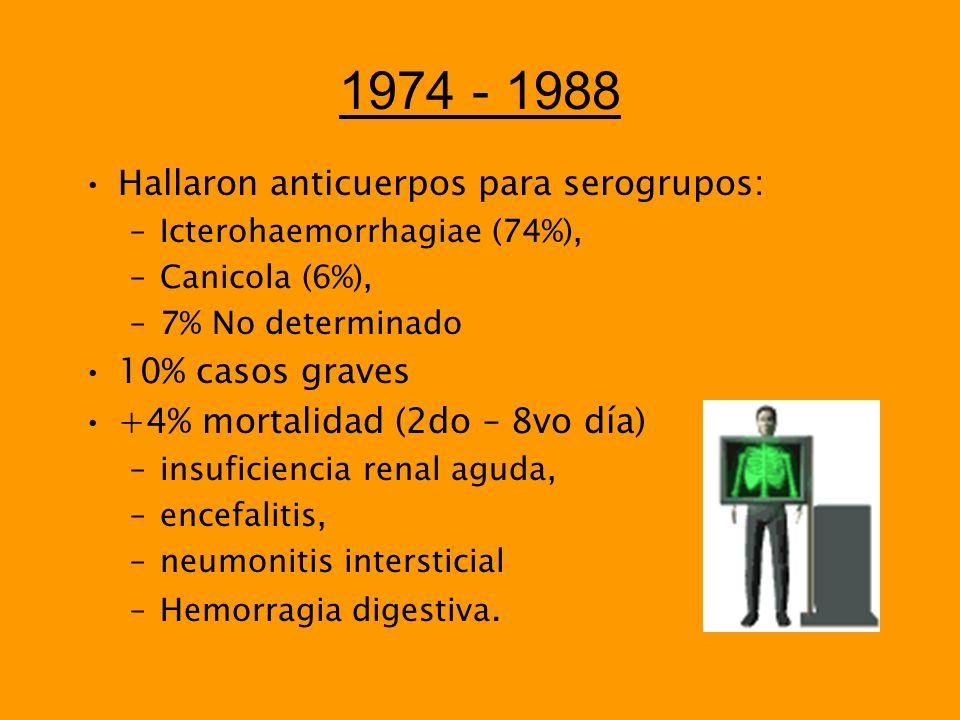 1974 - 1988 Hallaron anticuerpos para serogrupos: –Icterohaemorrhagiae (74%), –Canicola (6%), –7% No determinado 10% casos graves +4% mortalidad (2do