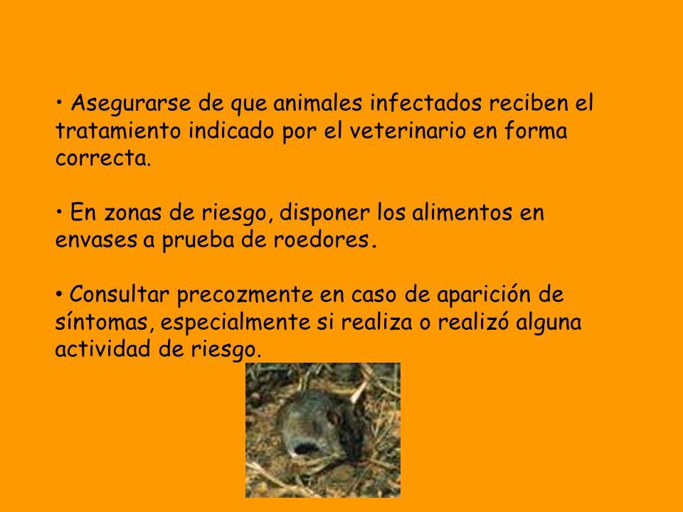Asegurarse de que animales infectados reciben el tratamiento indicado por el veterinario en forma correcta. En zonas de riesgo, disponer los alimentos