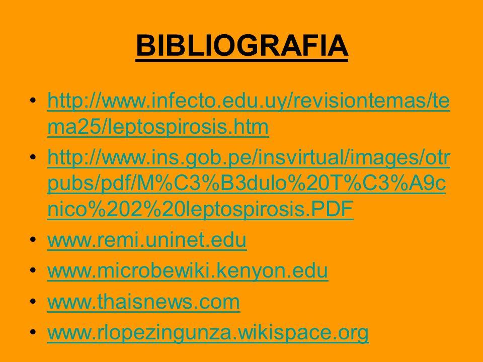 BIBLIOGRAFIA http://www.infecto.edu.uy/revisiontemas/te ma25/leptospirosis.htmhttp://www.infecto.edu.uy/revisiontemas/te ma25/leptospirosis.htm http:/