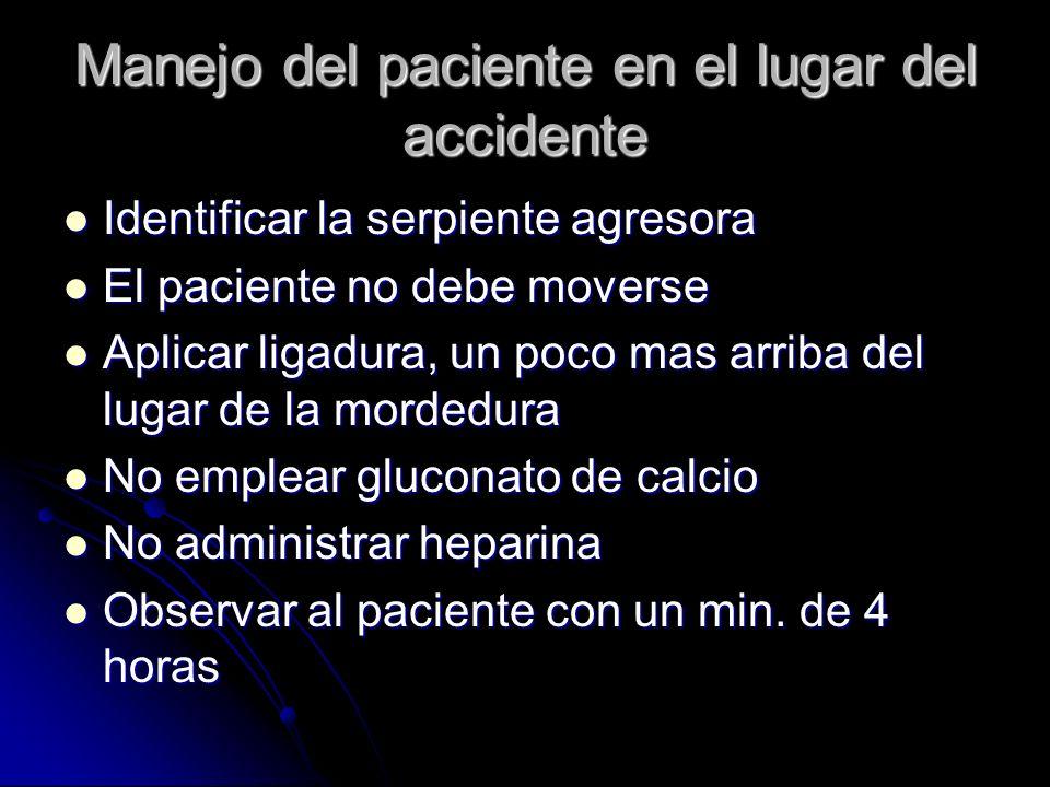Manejo del paciente en el lugar del accidente Identificar la serpiente agresora Identificar la serpiente agresora El paciente no debe moverse El pacie