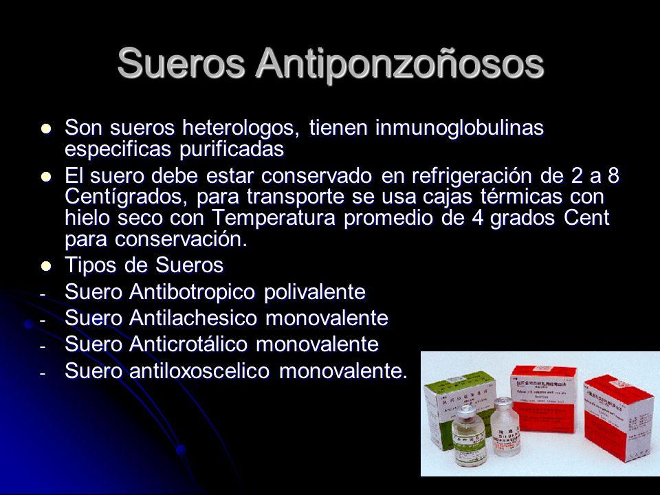 Sueros Antiponzoñosos Son sueros heterologos, tienen inmunoglobulinas especificas purificadas Son sueros heterologos, tienen inmunoglobulinas especifi