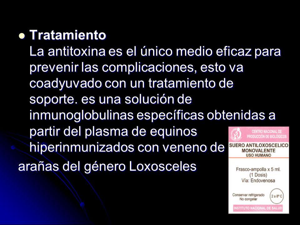 Tratamiento La antitoxina es el único medio eficaz para prevenir las complicaciones, esto va coadyuvado con un tratamiento de soporte. es una solución