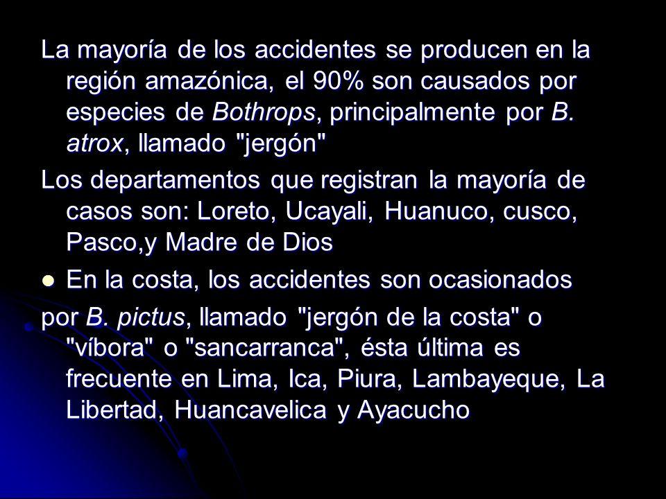 La mayoría de los accidentes se producen en la región amazónica, el 90% son causados por especies de Bothrops, principalmente por B. atrox, llamado