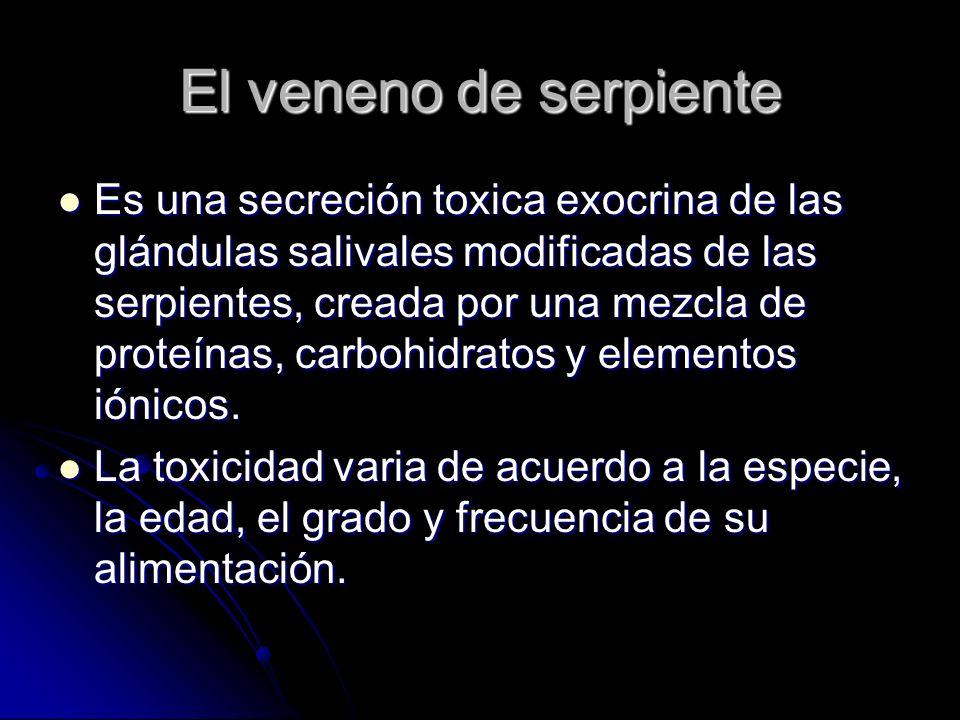El veneno de serpiente Es una secreción toxica exocrina de las glándulas salivales modificadas de las serpientes, creada por una mezcla de proteínas,