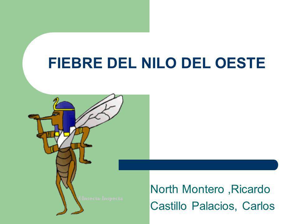 FIEBRE DEL NILO DEL OESTE North Montero,Ricardo Castillo Palacios, Carlos