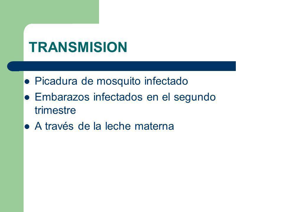 TRANSMISION Picadura de mosquito infectado Embarazos infectados en el segundo trimestre A través de la leche materna