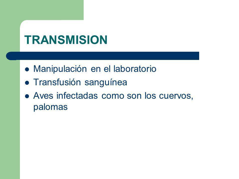 TRANSMISION Manipulación en el laboratorio Transfusión sanguínea Aves infectadas como son los cuervos, palomas