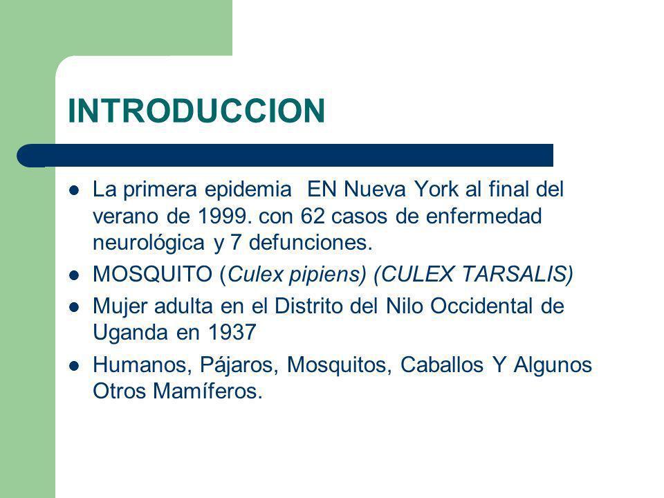 INTRODUCCION La primera epidemia EN Nueva York al final del verano de 1999. con 62 casos de enfermedad neurológica y 7 defunciones. MOSQUITO (Culex pi