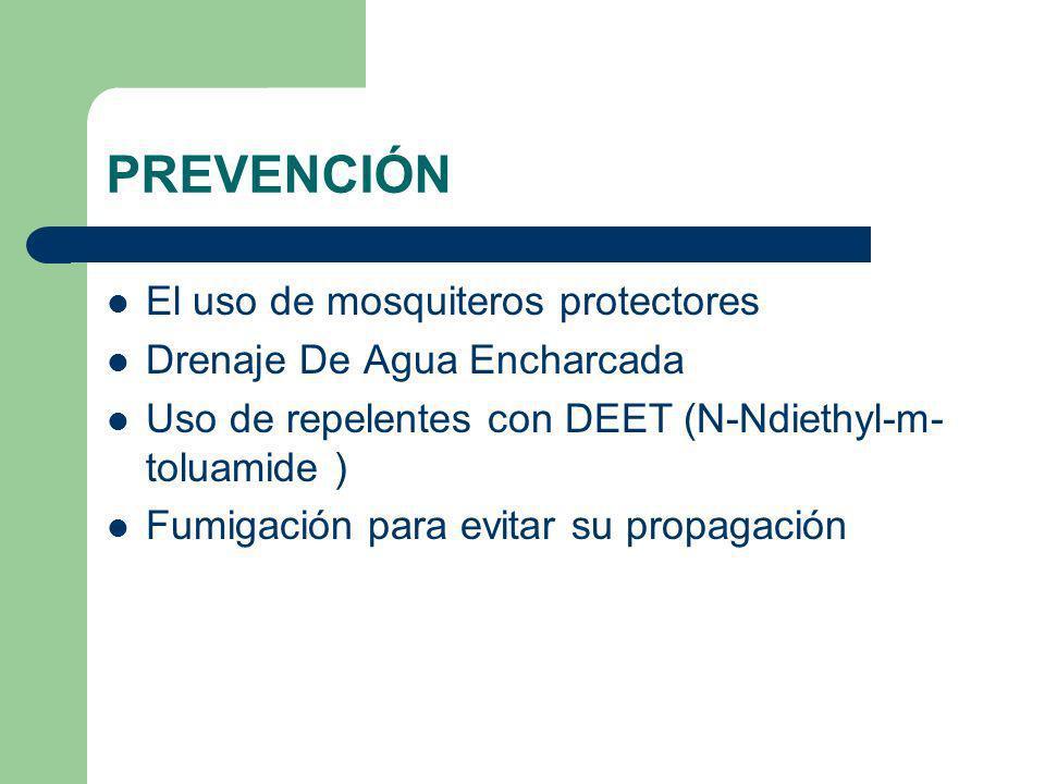 PREVENCIÓN El uso de mosquiteros protectores Drenaje De Agua Encharcada Uso de repelentes con DEET (N-Ndiethyl-m- toluamide ) Fumigación para evitar s
