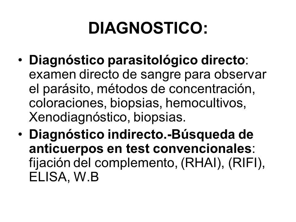 DIAGNOSTICO: Diagnóstico parasitológico directo: examen directo de sangre para observar el parásito, métodos de concentración, coloraciones, biopsias,