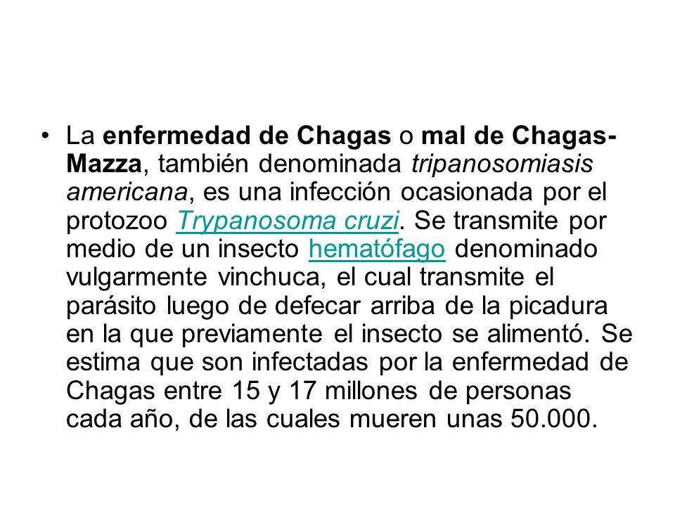 La enfermedad de Chagas o mal de Chagas- Mazza, también denominada tripanosomiasis americana, es una infección ocasionada por el protozoo Trypanosoma