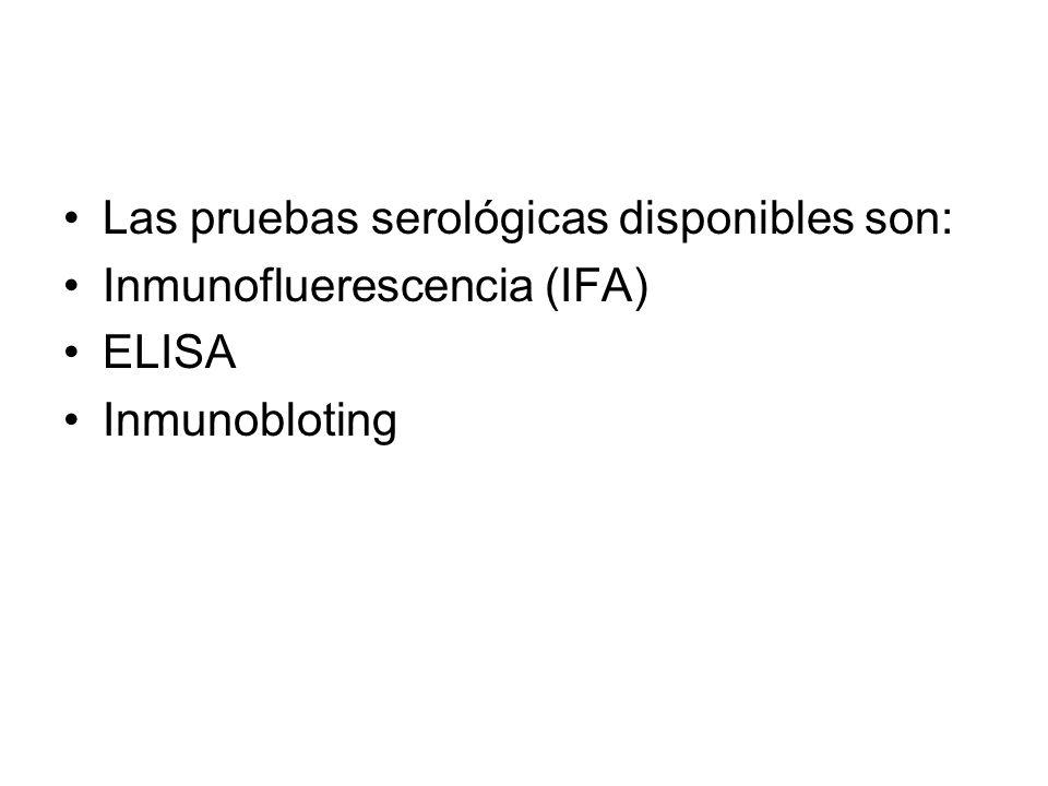 Las pruebas serológicas disponibles son: Inmunofluerescencia (IFA) ELISA Inmunobloting