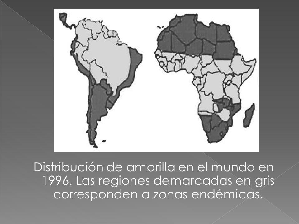 Distribución de amarilla en el mundo en 1996. Las regiones demarcadas en gris corresponden a zonas endémicas.