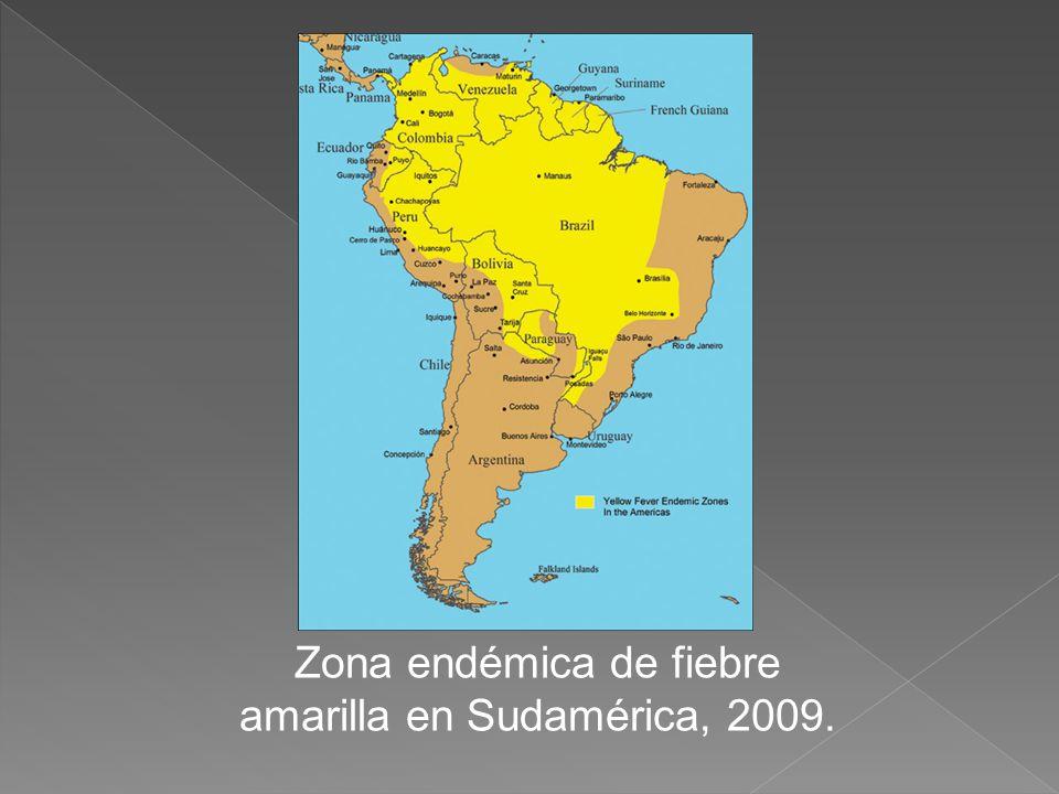 Zona endémica de fiebre amarilla en Sudamérica, 2009.