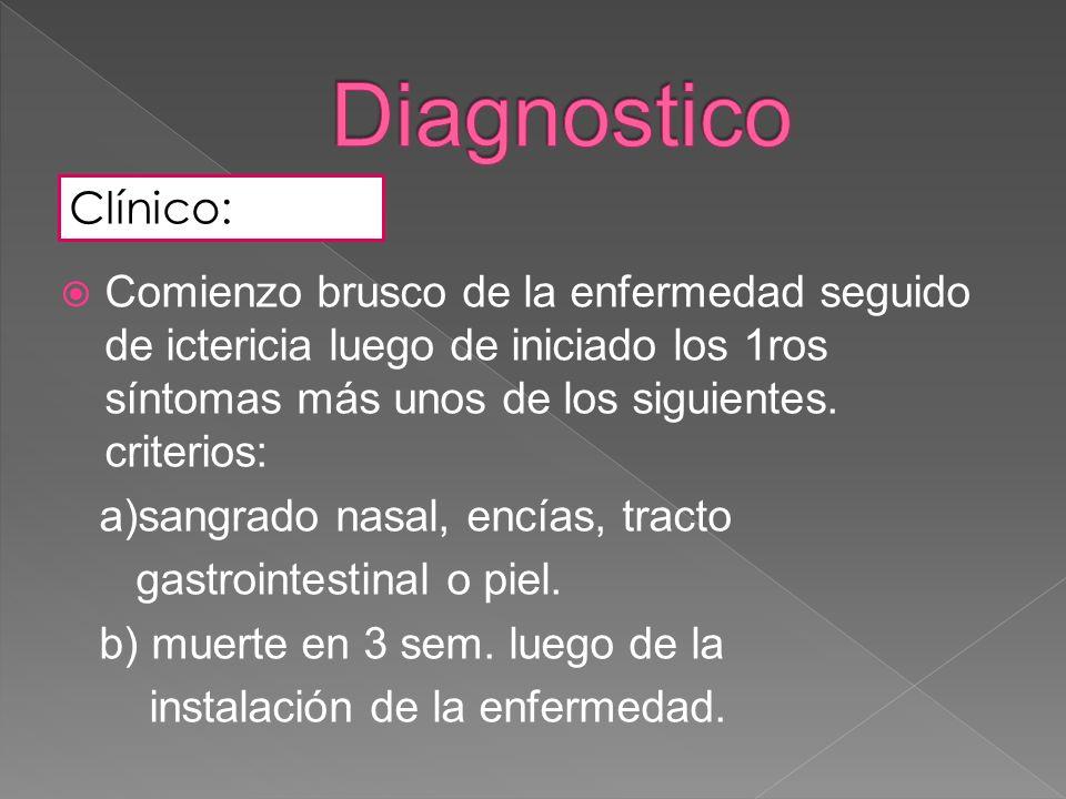 Clínico: Comienzo brusco de la enfermedad seguido de ictericia luego de iniciado los 1ros síntomas más unos de los siguientes. criterios: a)sangrado n