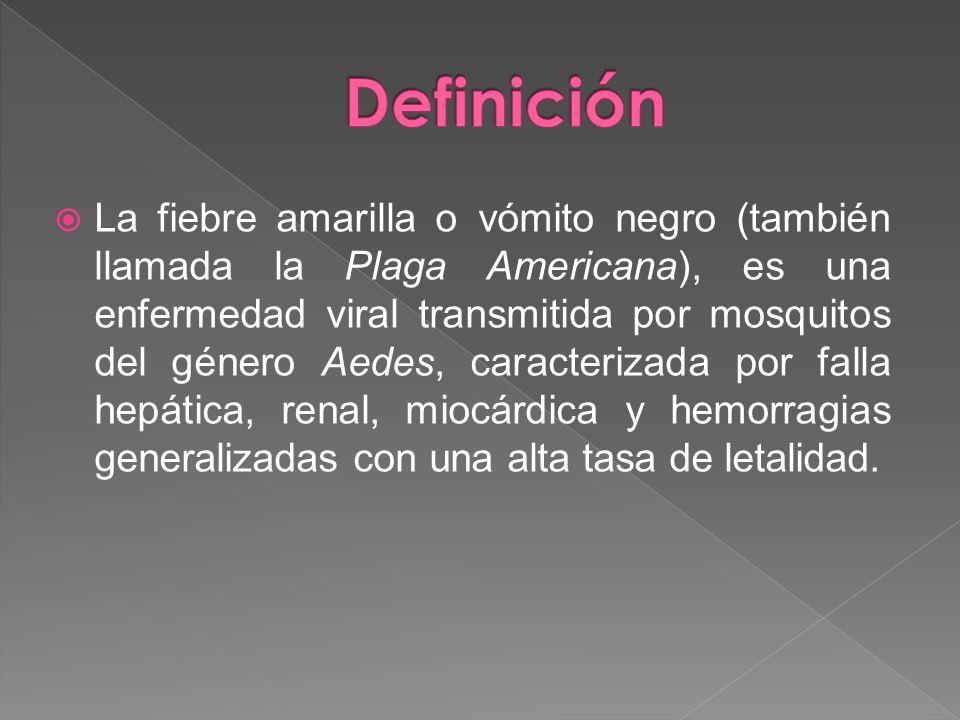 La fiebre amarilla o vómito negro (también llamada la Plaga Americana), es una enfermedad viral transmitida por mosquitos del género Aedes, caracteriz