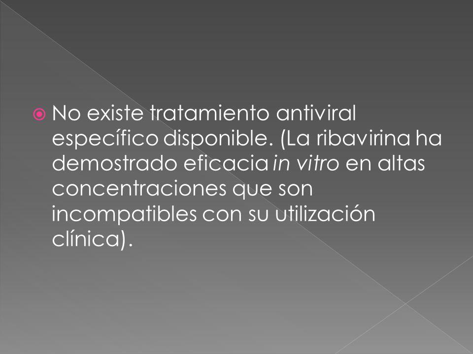 No existe tratamiento antiviral específico disponible. (La ribavirina ha demostrado eficacia in vitro en altas concentraciones que son incompatibles c