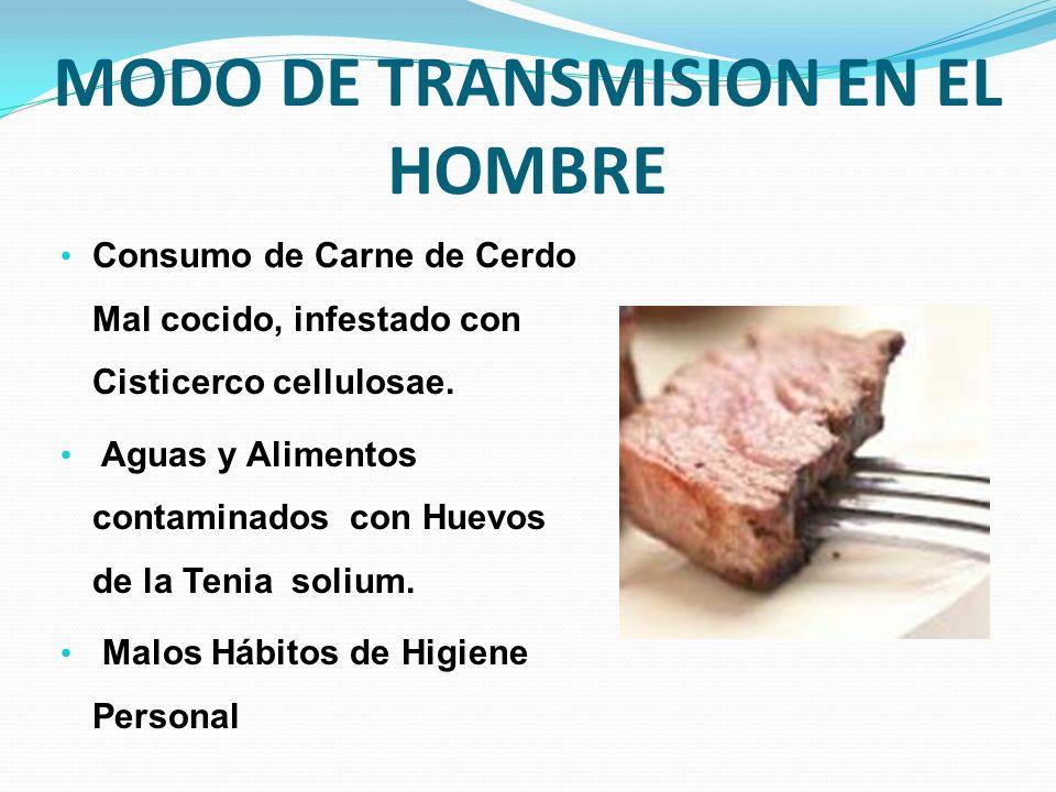 MODO DE TRANSMISION EN EL HOMBRE Consumo de Carne de Cerdo Mal cocido, infestado con Cisticerco cellulosae. Aguas y Alimentos contaminados con Huevos