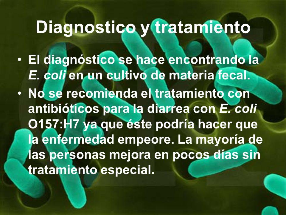 Diagnostico y tratamiento El diagnóstico se hace encontrando la E. coli en un cultivo de materia fecal. No se recomienda el tratamiento con antibiótic