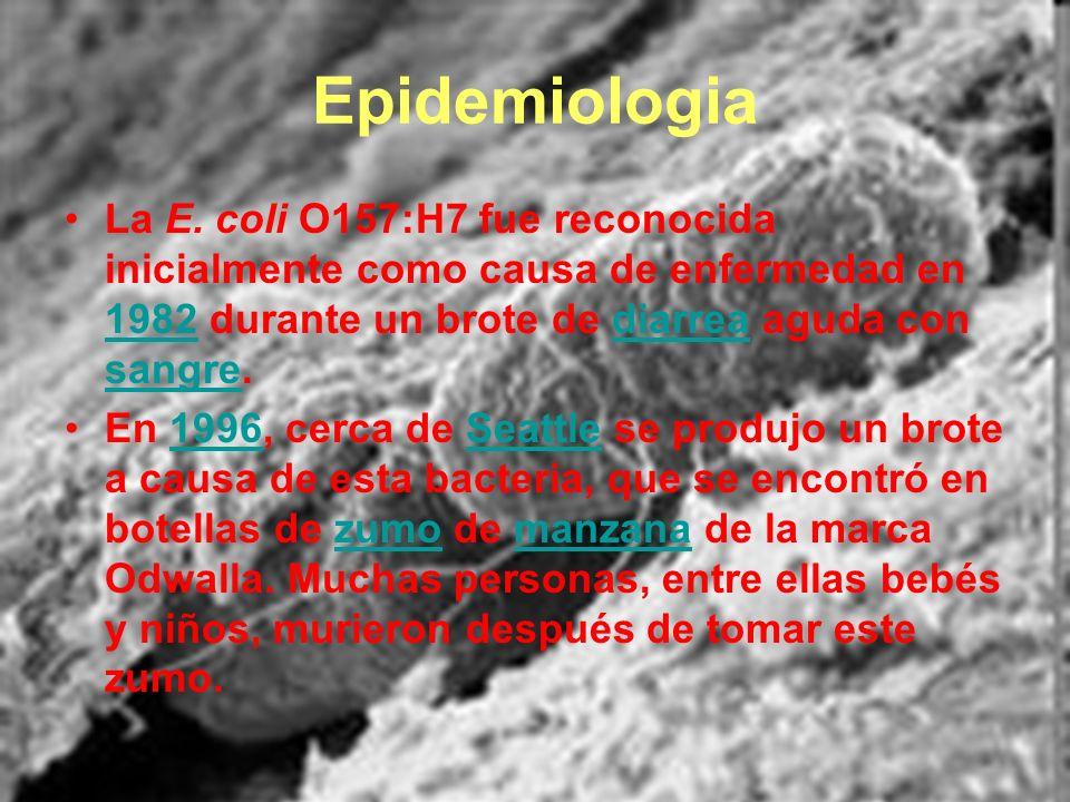 Epidemiologia La E. coli O157:H7 fue reconocida inicialmente como causa de enfermedad en 1982 durante un brote de diarrea aguda con sangre. 1982diarre