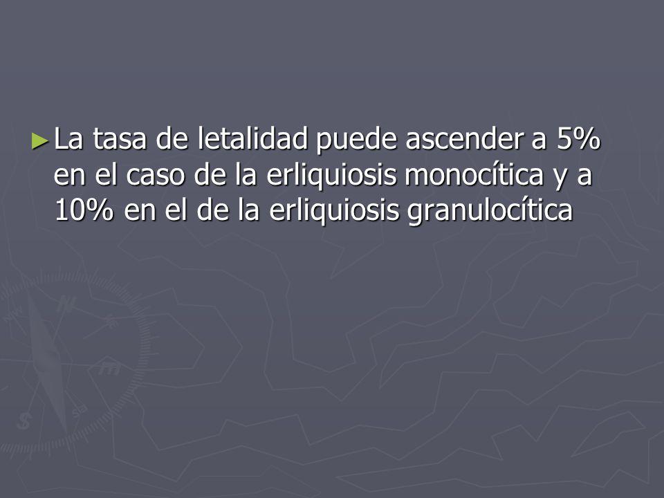 La tasa de letalidad puede ascender a 5% en el caso de la erliquiosis monocítica y a 10% en el de la erliquiosis granulocítica La tasa de letalidad pu