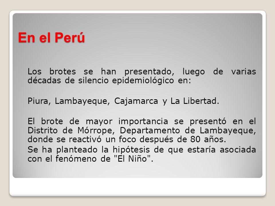 En el Perú Los brotes se han presentado, luego de varias décadas de silencio epidemiológico en: Piura, Lambayeque, Cajamarca y La Libertad. El brote d